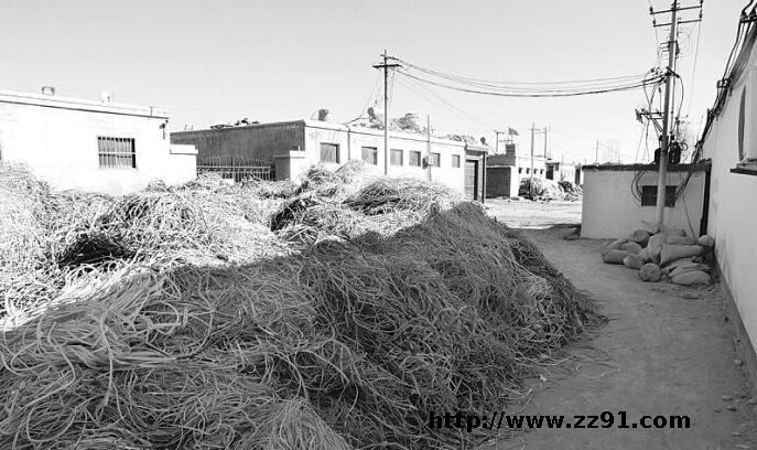 保定废塑料集散中心