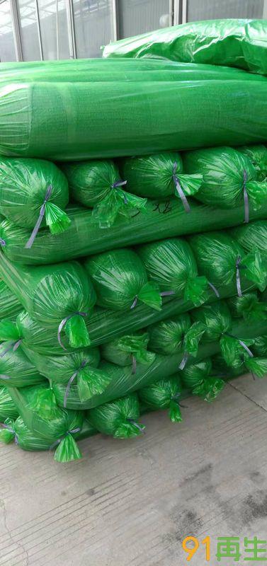 各种规格盖土网,防晒网,大棚种植网