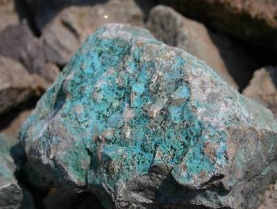 夏日哈木铜镍矿填补我国造山型铜镍矿空白