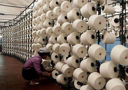 国际出生态纺织品新标准 4月份将生效